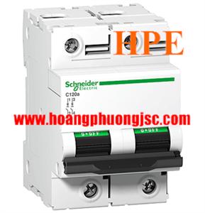 A9N18458 - Aptomat Schneider C120H 2P 100A 15kA 415V
