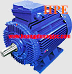 Động cơ Elektrim EM160L-4 15KW, 20HP