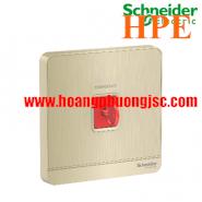 Nút nhấn khẩn cấp có khóa Reset E8331KPB_WG_G19 Schneider
