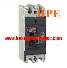 EZC100H2060 - Aptomat MCCB Schneider 2P 60A 30kA 220/240V Easypact EZC100H